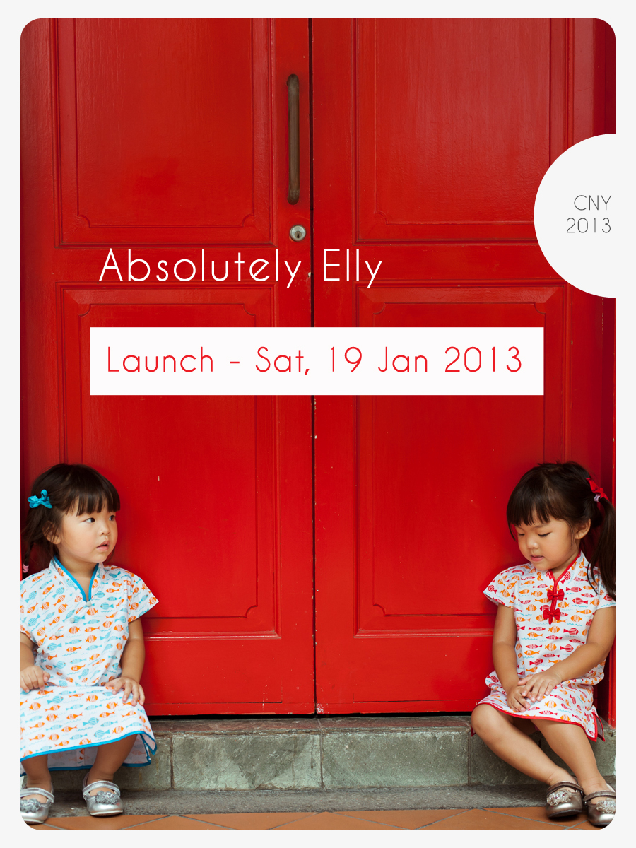Absolutely Elly launch 1